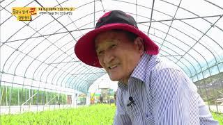 성공의 정석, 꾼 133회 양구토종민들레영농조합