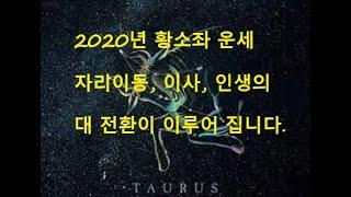 타로점 4/20-5/20일생 :   황소좌   2020년 두번의 기회, 이사, 이동수, 물건구입, 여행, 소…