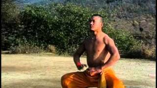 Shaolin warrior training thumbnail