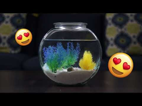 How To Decorate a Fish Bowl