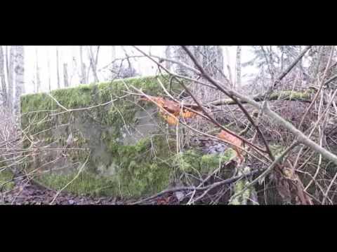 Metal Detecting At Kanaka Creek Regional Park