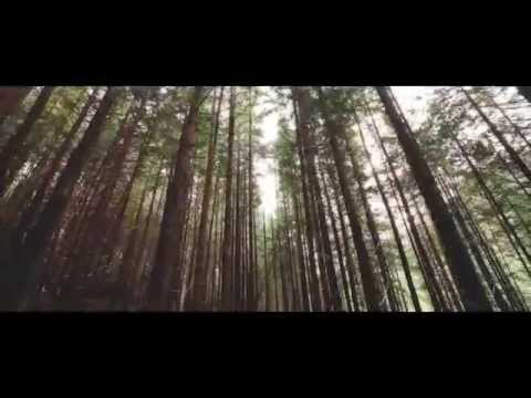 World Environment Day 2015 Official Video