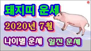 7월 돼지띠 운세 - 2020년 7월 경자년 계미월 돼지띠 일진 사주 운세보기
