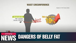 Life & info: adding 5 cm to waistline increases risk of early death by 10 pct.