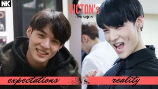 Expectations Vs. Reality - VICTON's Lim Sejun