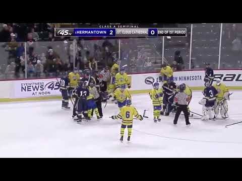 St. Cloud Cathedral Vs Hermantown Donnybrook | State Hockey Championship