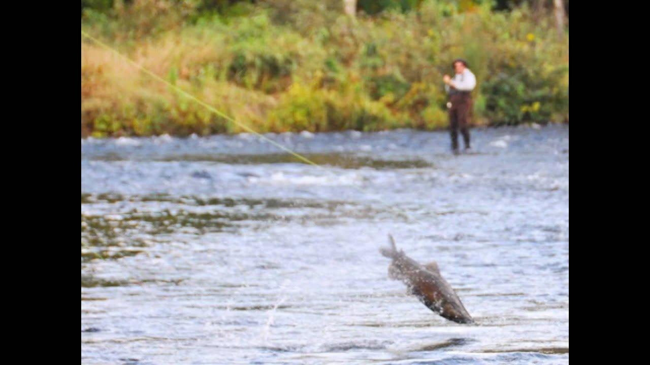 Salmon river new york fishing real estate youtube for Salmon fishing new york