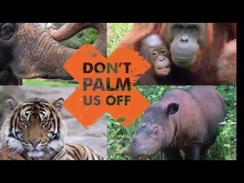 Palm Oil: Deforestation Facts
