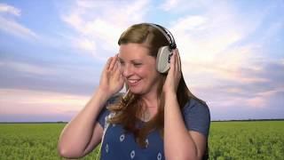 AVC Headphones