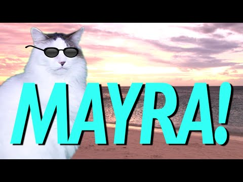 hqdefault happy birthday mayra! epic cat happy birthday song youtube