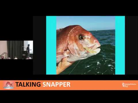 Snapper Boat-fishing Tips And Techniques - Lee Rayner