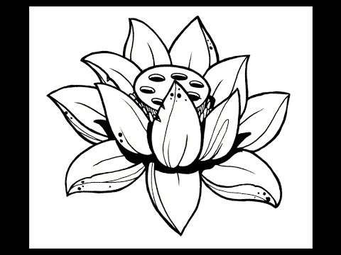 How to draw a lotus flower by thebrokenpuppet