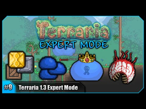 Let's Play Terraria 1.3 Expert Mode (PC) || Eye Of Cthulhu, King Slime & Fishing! [Episode #9]