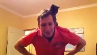 Как одеть футболку с котом