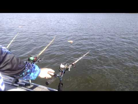 Drifting for blue catfish techniques funnydog tv for Fish bite rod holders