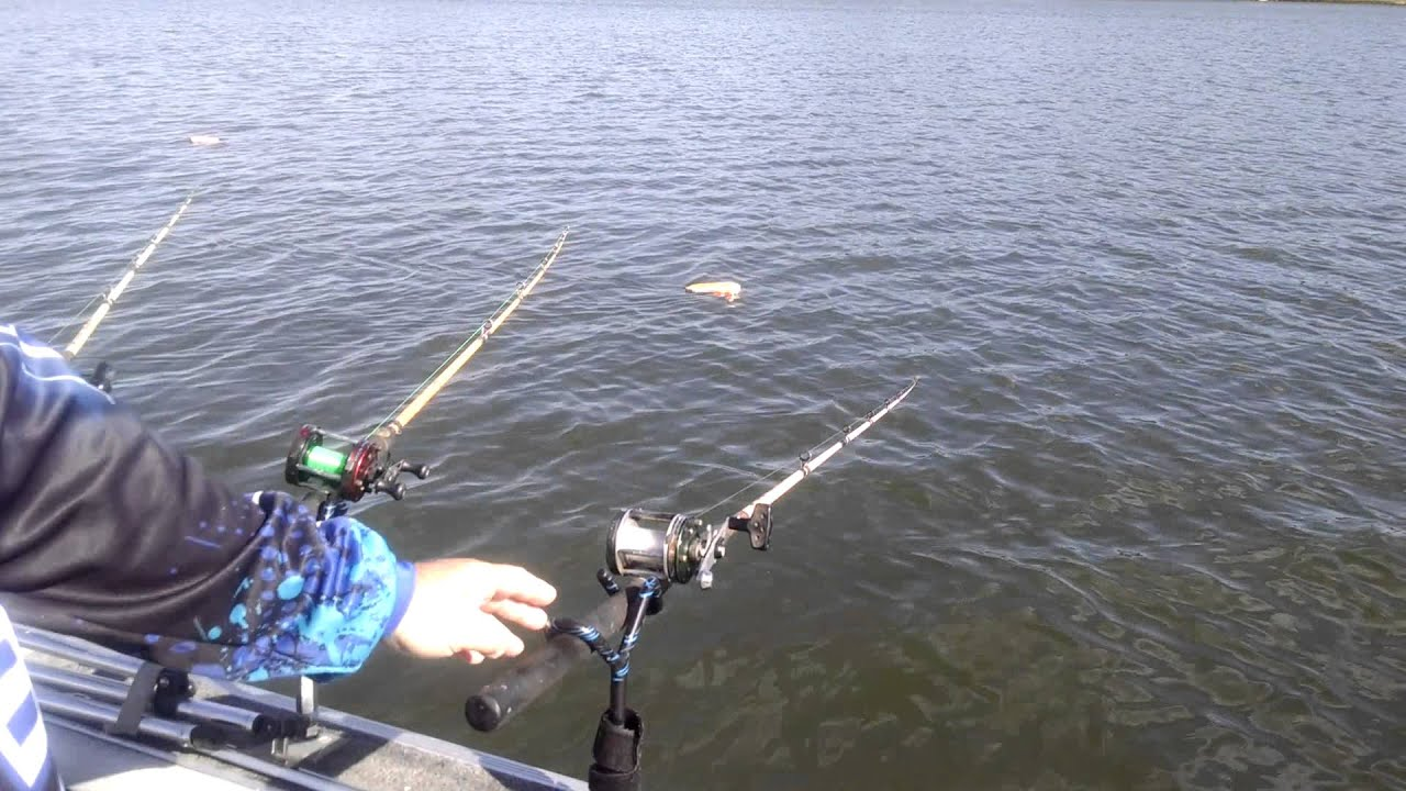 fish bite rod holder setup trolling for catfish youtube