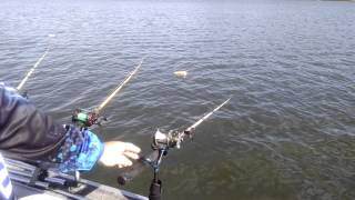 Fish Bite Rod Holder Setup Trolling For Catfish