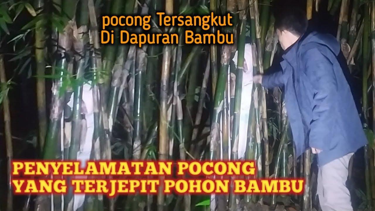 Pocong Terjepit Pohon Bambu