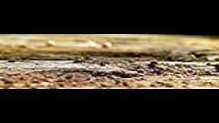 petard au ralentis 1000 image seconde