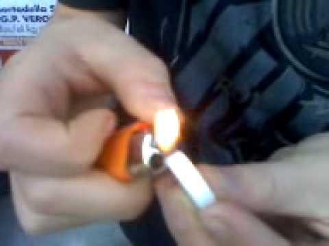 Manggerbiebele isst brennenden Traubenzucker