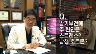 [아담스비뇨기과] 발기부전의 원인, 스트레스? 호르몬?