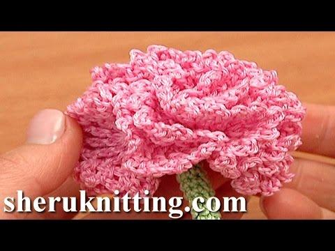 Carnation Flower Pattern Crochet Tutorial 77 How to Crochet Tube Cord