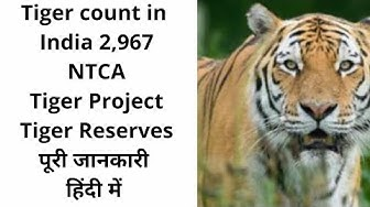 TIGER CENSUS 2019 LATEST FACTS TIGERS IN INDIA NTCA GLOBAL TIGER DAY current affairs 2019  news gk