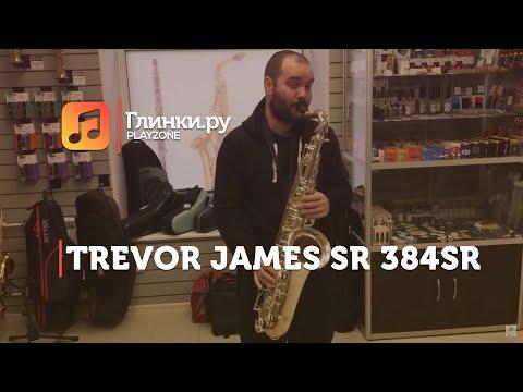 Тенор-саксофон Trevor James SR 384SR-SS - Александр - Глинки.Ру PLAYZONE