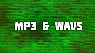 The Quality Difference Between MP3 and WAV 🌊🎧