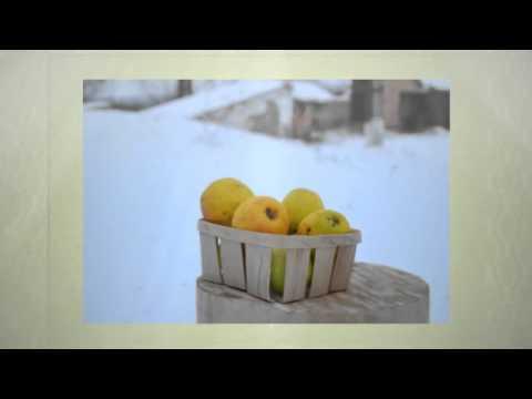 купить корзинки для фасовки грибов тару лукошко упаковку из шпона оптом wood veneer baskets ukraine