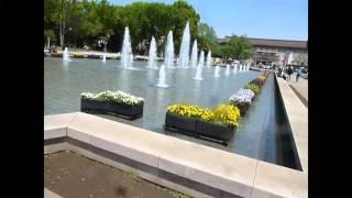 東京上野公園上野公園全名恩賜公園,日本第一座公園,佔地53萬平方公尺...