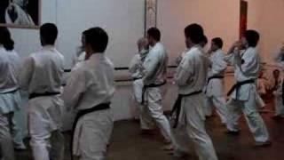 Kata Shisochin - www.gojuryu.com.ar