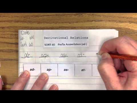DV60 Prefix Assimilation (ad)