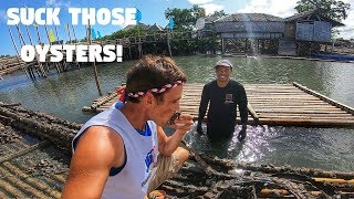 EATING FILIPINO GROWN OYSTERS ON BAMBOO FLOATING HOUSES (Philippines Seafood City)