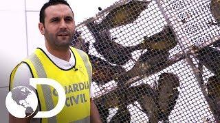 Equipaje de mano canta mucho | Control de fronteras | Discovery Latinoamérica