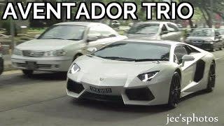 White Lamborghini Aventador Trio - Arrival and Loud Departure