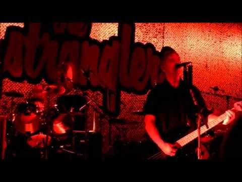 The Stranglers - 'Golden Brown' - Live at The Cliffs Pavilion, Southend - 13.03.15