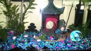 Colorful Asian theme betta fish tank