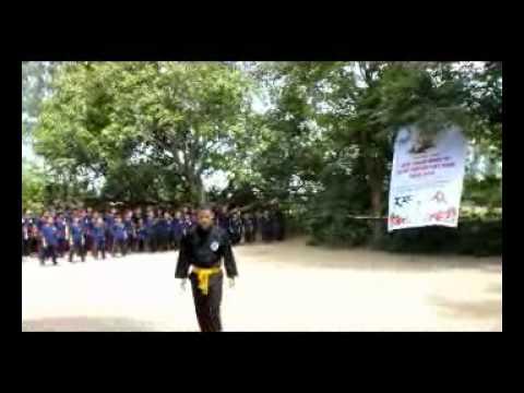 Liên hoan quốc tế võ cổ truyền Việt Nam lần thứ III - Bình Định 2010