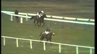 L'Escargot- The 1971 Cheltenham Gold Cup