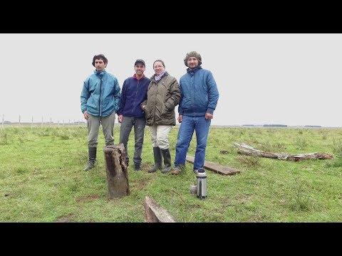 Grupo La Amistad, Colonia Artigas del Instituto Nacional de Colonización de Uruguay