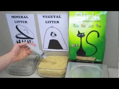 Siria la miglior lettiera vegetale agglomerante per gatti for Migliore lettiera per gatti