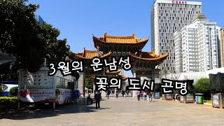 중국 운남성 자유여행 - 곤명