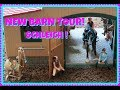 🏇NEW SCHLEICH HORSE BARN AND STABLE TOUR!🏇| FIRST DAY TV🐴
