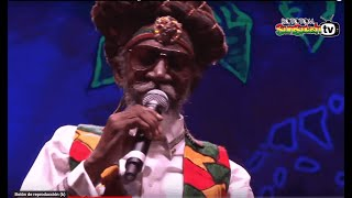 BUNNY WAILER & The Solomonic Orchestra live @Main Stage 2015