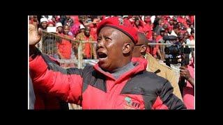 AfriForum: EFF lede-werwers par excellence | LitNet