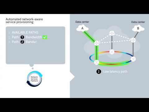 Nokia Network Services Platform - Automated network-aware service provisioning