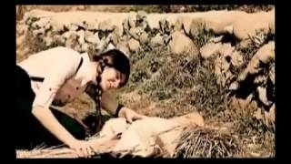 AWAB Moradi  Bawaresh sakhte best new Afghani song 2012   YouTube 360p]