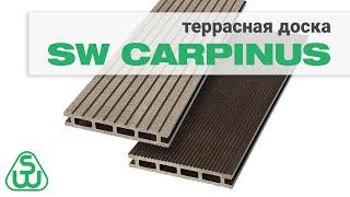Террасная доска SW Carpinus — обзор