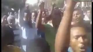 Ethiopia : Qeerroo Voice about